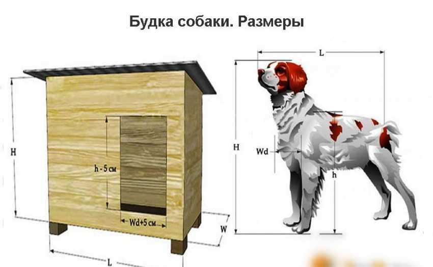 Будка для собаки своими руками из досок