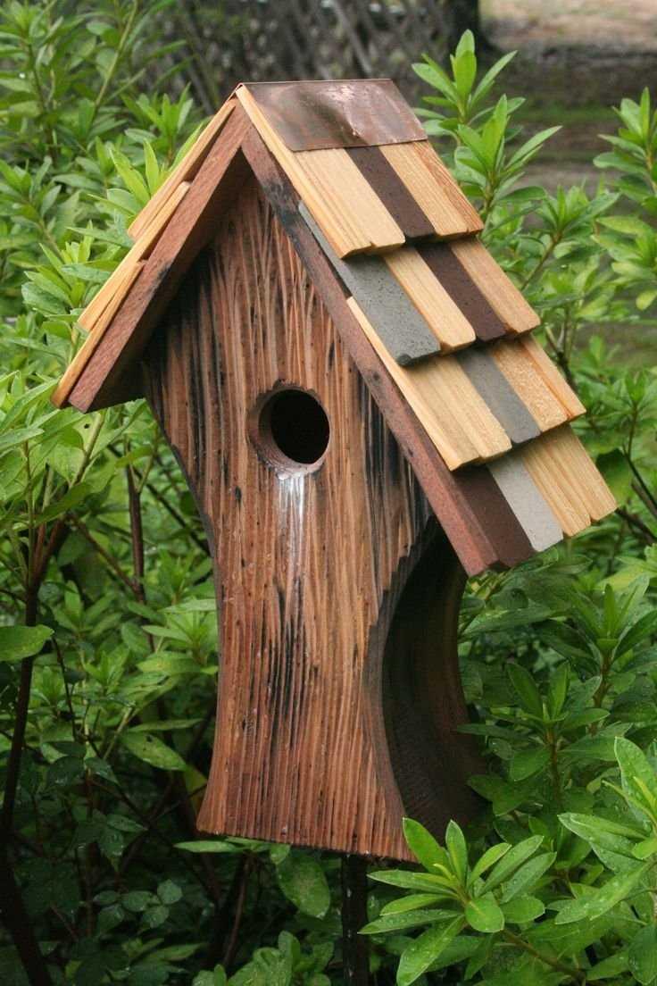 Скворечники для птиц своими руками фото оригинальные идеи из дерева