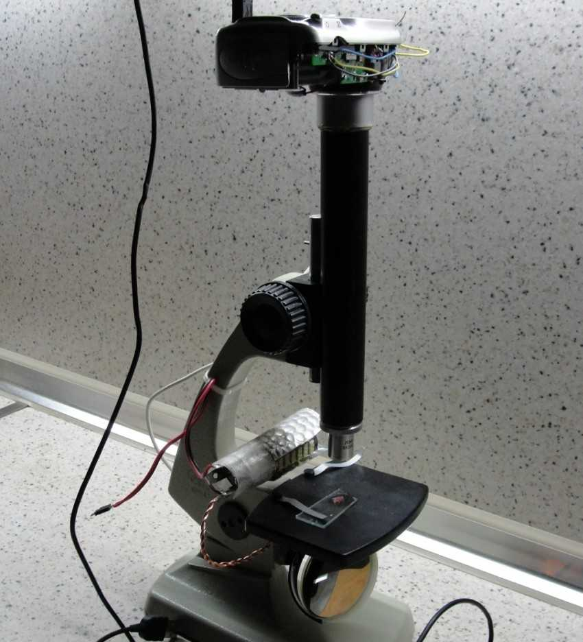 как самому сделать микроскоп в картинках листва