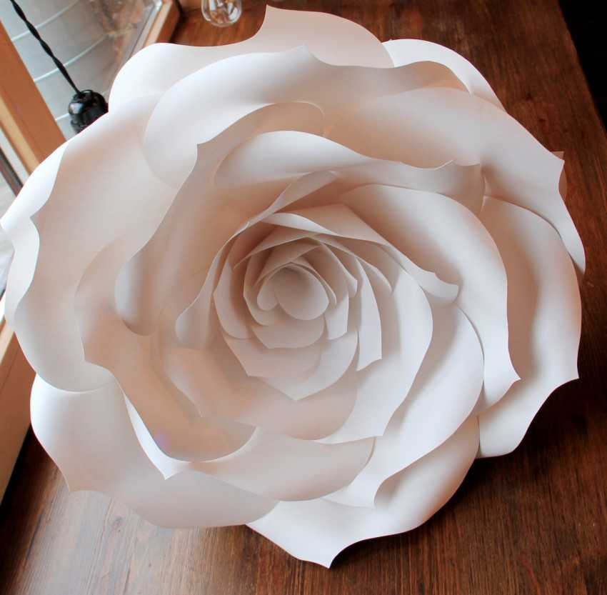 пришла нашу картинки объемные розы собственным примером она